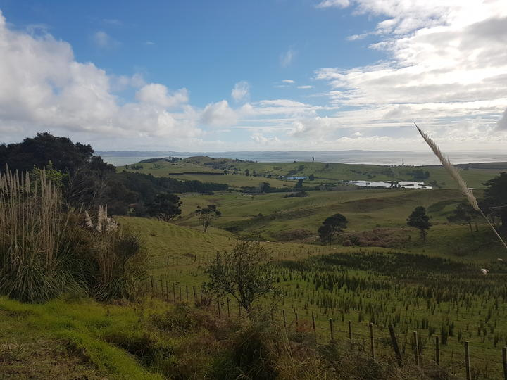 The view west to the Kaipara Harbour from Tuhirangi, with Gibbs' Farm sculptures in the background.