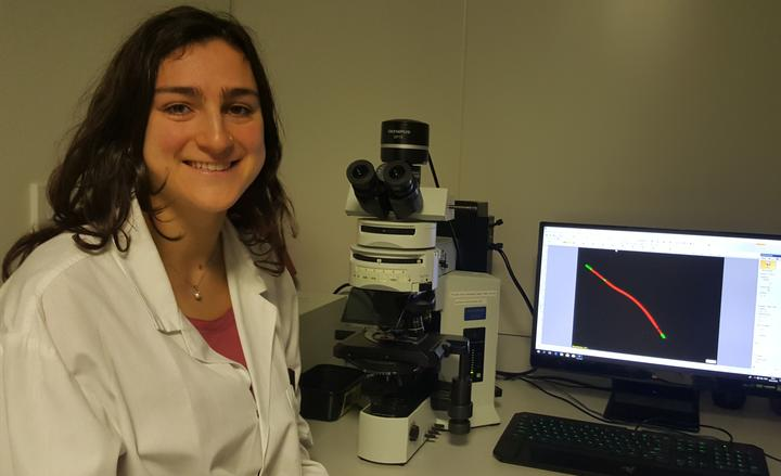 Master's student Rossella Nicolai is using a  fluoresence microscope to study cyanobacteria.