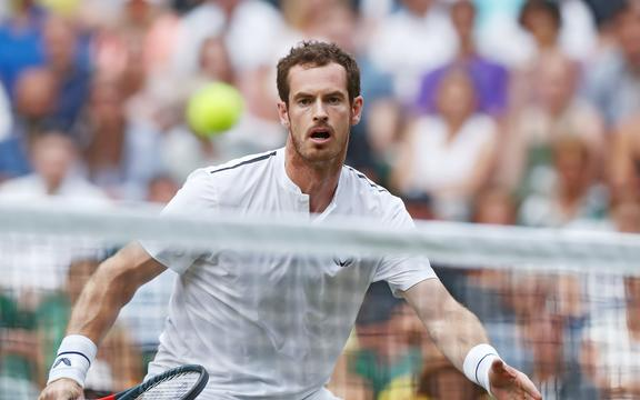Andy Murray 2019