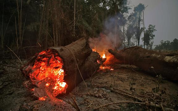 Fire in the Amazon rainforest, near Abuna, Rondonia state, Brazil, August 24, 2019.