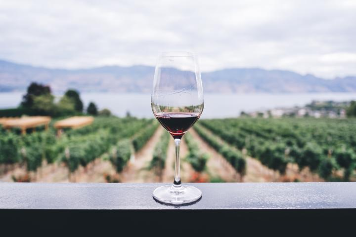 Wine glass on railing, wine, grapes, vines, stock image, generic