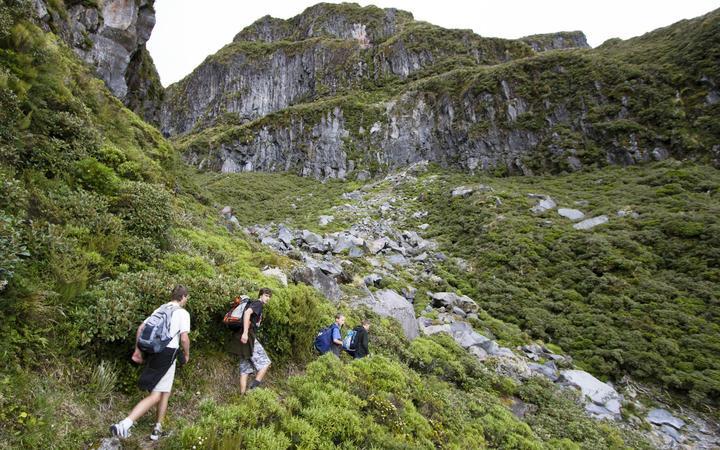 Walking along the Holly Hut Track - Taranaki