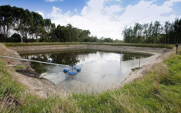 An effluent pond on a dairy farm.