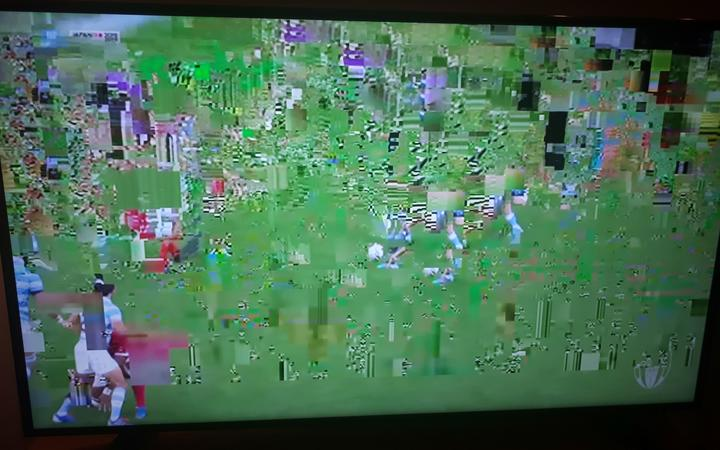 Interference seen on one Spark Sport user's screen during the Argentina v Tonga match.
