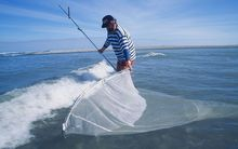West Coast whitebaiters want more stringent regulations.