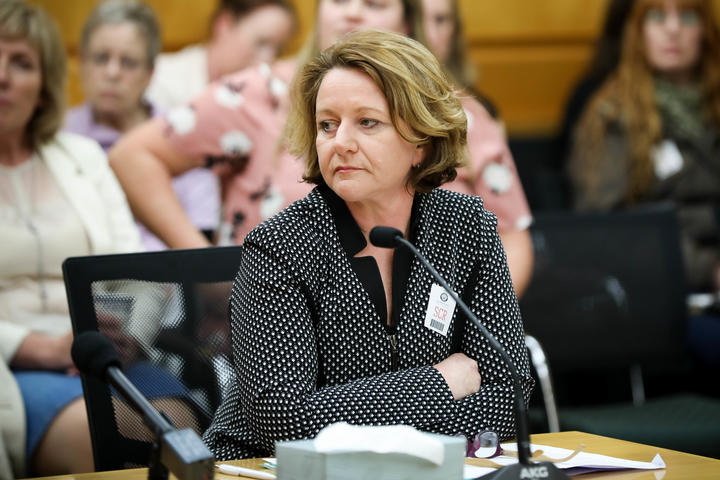 Chief Executive Office of the New Zealand Medical Association Lesley Clarke speaks to the Abortion Legislation Committee