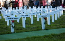 The Field of Remembrance Trust's 100 white crosses on the lawn of Parliament.