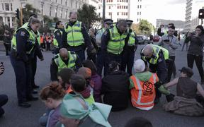 Protesters are moved on by police in Wellington.