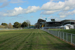 The view down the main straight at Awapuni.
