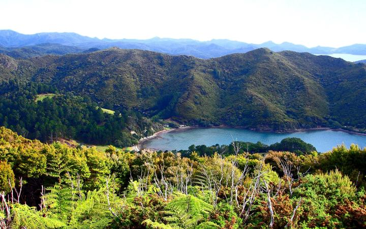 Great Barrier Island, looking down onto Orama's Bay.