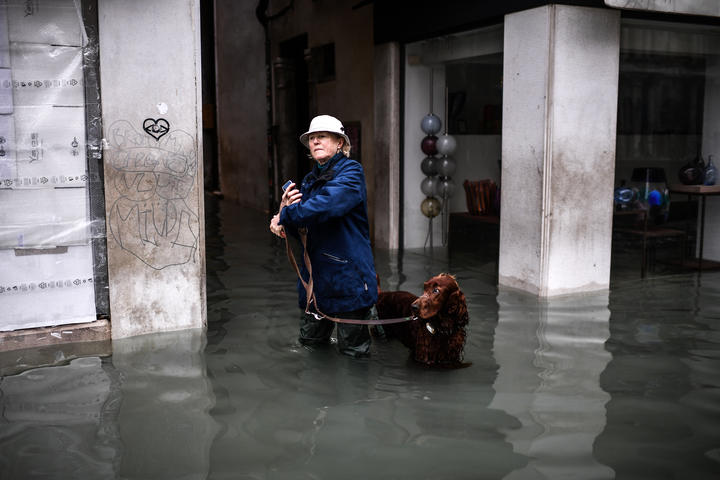 "A woman walks her dog through a flooded street after an exceptional overnight ""Alta Acqua"" high tide water level, on 13 November, 2019 in Venice."