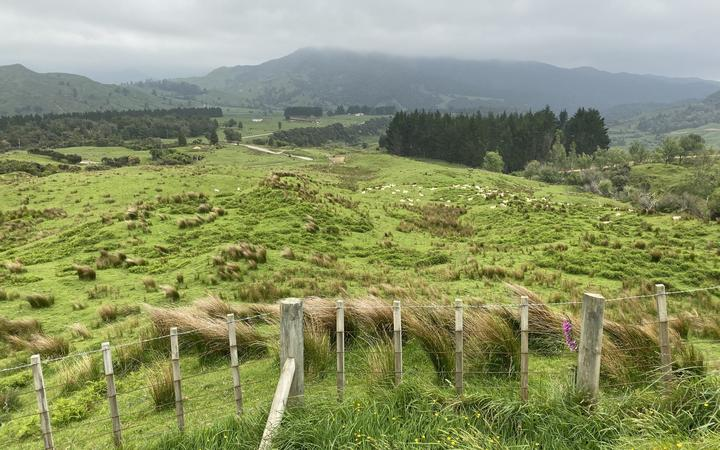 The isolated Waikura Valley is about four hours' drive north of Gisborne.