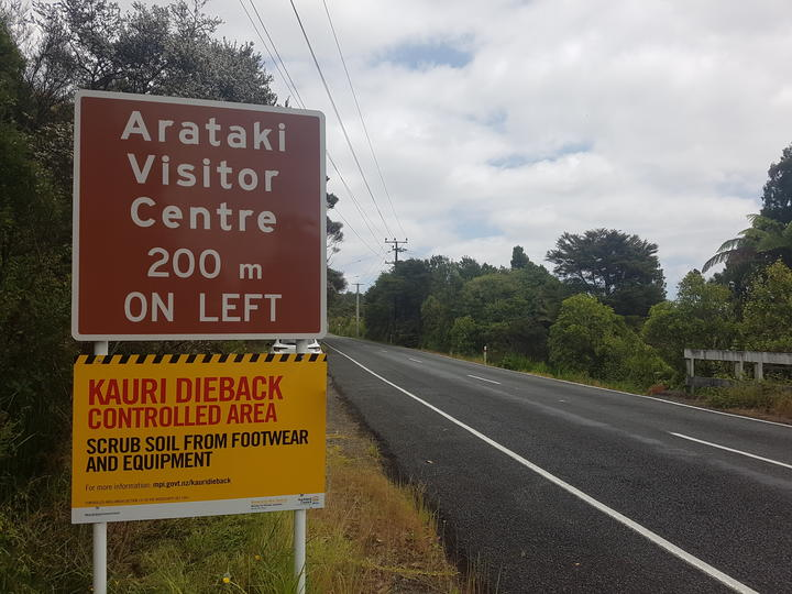 Signage of kauri dieback controlled area near Arataki Visitor Centre.