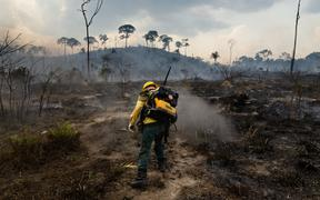Members of the IBAMA forest fire brigade (named Prevfogo) fight burning in the Amazon area of rural settlement PDS Nova Fronteira, in the city of Novo Progresso, Para state, northern Brazil, - September 3 2019