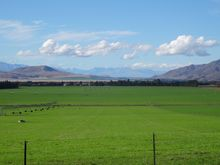 Some alpine tussock land in the Mackenzie Country is being irrigated for intensive farming.