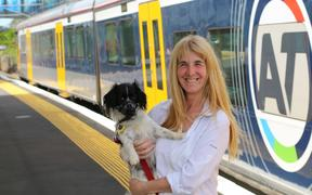 Auckland Transport dog trial on public transport extended to bigger dogs