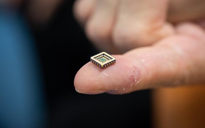 A tiny chip on a person's finger.