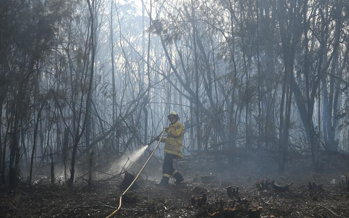 A firefighter dowses a bushfire in the residential area of Sydney. Firefighters will carry out backburning today to control two massive blazes on two sides of Sydney