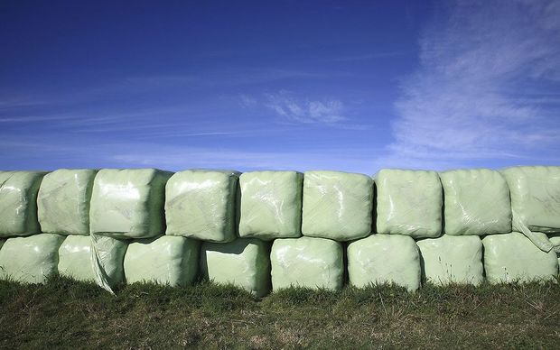 Fonterra and Plasback have disagreed about support for silage wrap recycling in New Zealand.