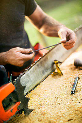 A forestry worker sharpens the chain on his saw.