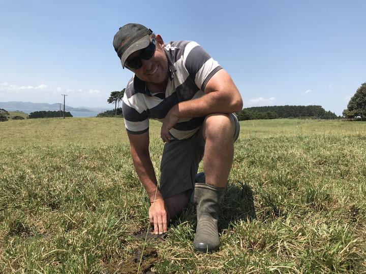 David Kidd on his farm looking for dung beetles
