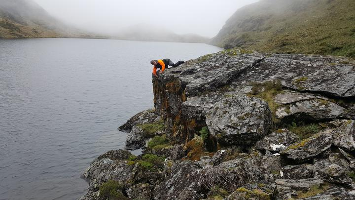 Alpine ecologist Kerry Weston checking a rock wren nest tucked at the top of a large boulder overlooking Minim Mere in the Haast Range, South Westland.