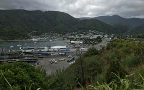 Generic pic of Picton's ferry terminal and the town.