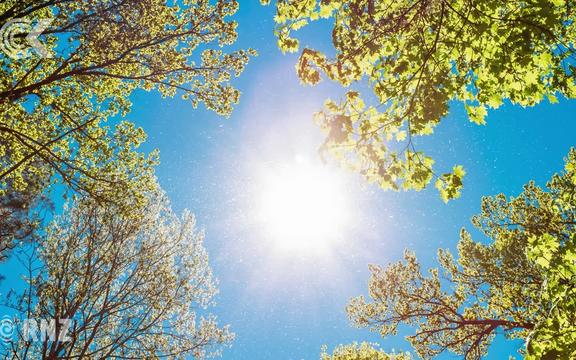 Weather: Reprieve from heat as wind changes