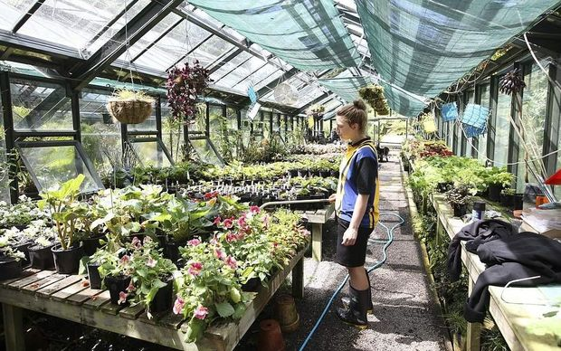 The Flower Growers' Association says more needs to be done to encourage younger people to join the industry.