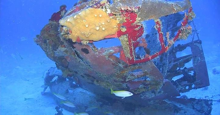 The propeller from a TBM/F-1 Avenger torpedo bomber in Truk Lagoon, as photographed by a remotely operated vehicle.