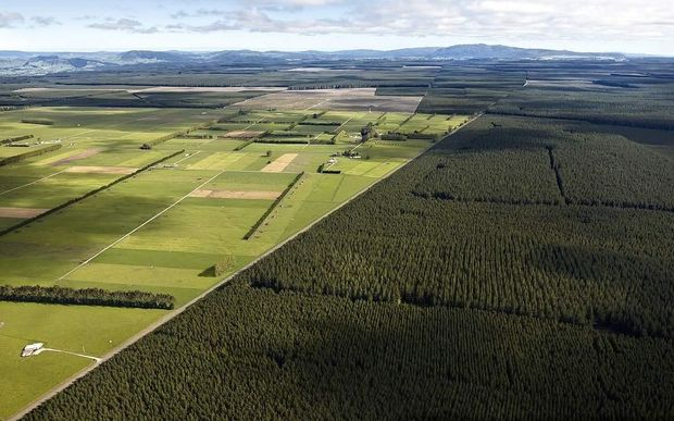 An aerial view of Kaingaroa Forest and surrounding farmland.
