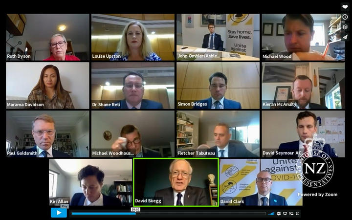 Screenshot of the Epidemic Response Committee listening to David Skegg