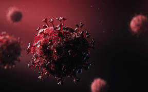 3D model design of the novel coronavirus virion