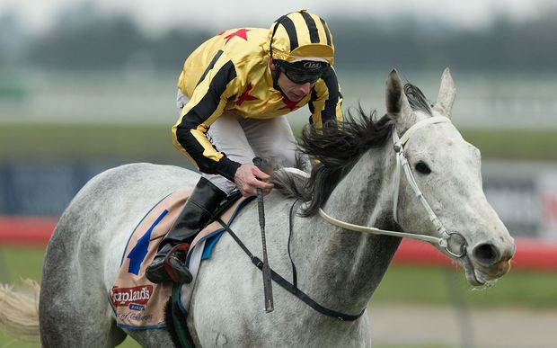 David Walker riding Khemosabi to win the Premier Open Race 4 at Riccarton Park, Christchurch in 2013.