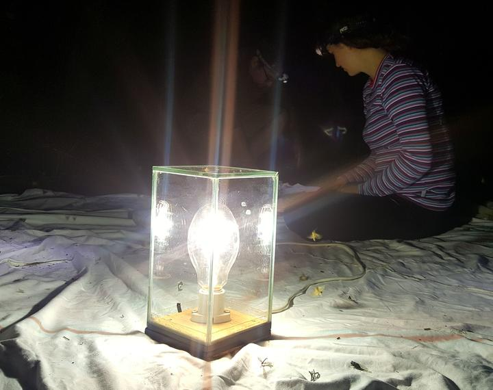 A moth trap involves a white sheet and a bright ultraviolet light to attract moths.