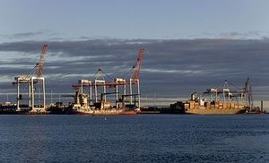 The Port of Tauranga.