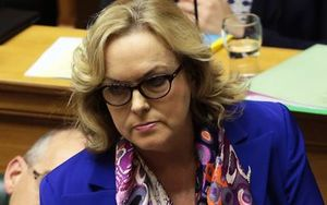 National MP Judith Collins during question time at the debating chamber, Parliament.