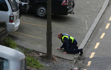 Police looking for the 'armed' man in Wellington.