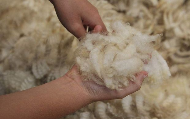 The Primary Wool Co-operative will take a 5 percent stage in Wool Equities if shareholders agree.