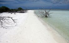 Christmas Island bird sanctuary in Kiribati.