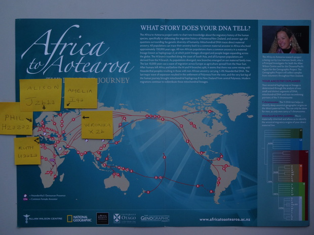 Map shows ancient genetic heritage of Radio NZ staff.