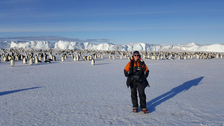 Producer Alison Ballance with the Emperor penguin colony at Cape Crozier, which was the subject of the book 'The worst journey in the world.'