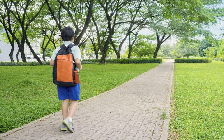Rear view of male elementary school student walking alone to school while carrying backpack, truancy