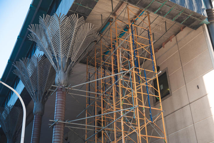 Scaffolding by the metal nikau sculptures of the Wellington Central Library building.