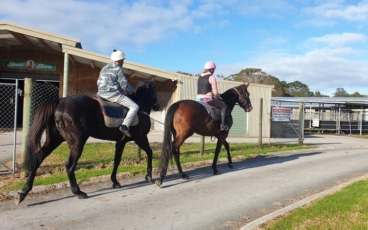 Race horses at New Plymouth raceway return to the stables after training.