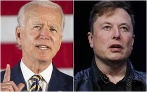 Democratic presidential candidate Joe Biden and Tesla Chief Executive Elon Musk's Twitter accounts were both hacked.