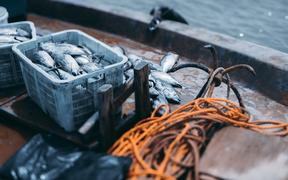 View with a shallow depth of field of the deck of a fishing vessel: boxes with a fresh fish yield of tuna, the yellow rope and simple drag anchor, ocean water with bokeh overboard