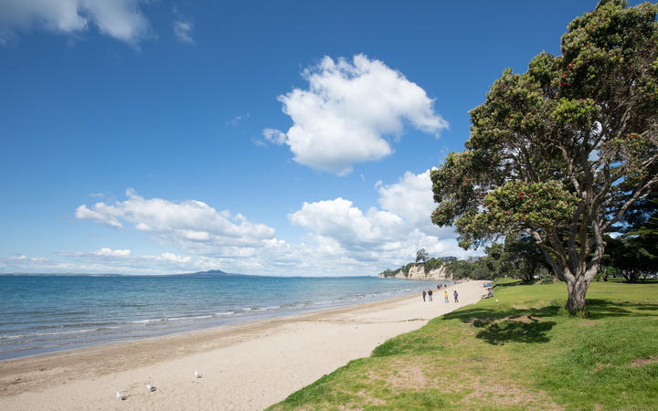 Browns Bay community on the North Shore, Auckland