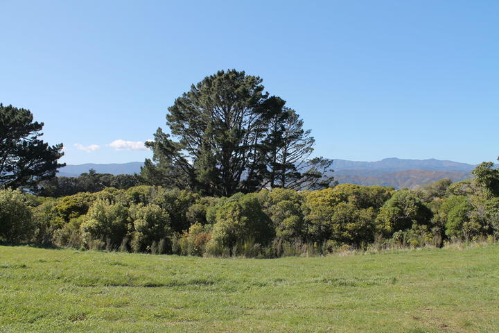 The view looking west at the rear access point to the prison: the Remutaka Ranges.