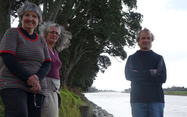 Fiona Clark, Andrea Moore and Mark Jury are not convinced 23 mature pohutukawas in Waitara need to be felled.